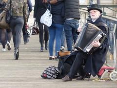 Noble & Fier (serpico1308) Tags: people paris personne musique noble regard appliqu fier accordon mendiant lgant confiance