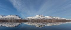 In Reydarfjordur (*Jonina*) Tags: iceland sland reydarfjordur reyarfjrur reflection speglun mountains fjll jnnagurnskarsdttir 500views 25faves