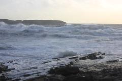 IMG_8374 (DaveGifford) Tags: ireland spanishpoint wildatlanticway