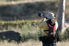 Sycamore Grove 4-17-16 (82) (tpbsr) Tags: birds owl april woodpeckers livermore lvcc sycamoregrove sycsmoregrove michaelpolk