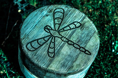 Woodenfly [23/30] (Nomis.) Tags: wood canon insect eos rebel fly flying wooden wings dragonfly seat carving april stool winged day23 pictureaday lightroom 2330 2016 700d canon700d canoneos700d t5i canonrebelt5i april2016 rebelt5i april2016challenge sk201604236808editlr sk201604236808