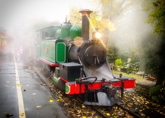 Puffing Billy on a Misty Morning. Melbourne, Australia. (Phil Ostroff) Tags: travel tourism train australia melbourne belgrave puffingbilly