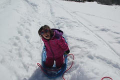 Jovie being silly (Aggiewelshes) Tags: travel winter snow april snowshoeing wyoming jacksonhole jovie grandtetonnationalpark 2016 gtnp taggartlaketrail