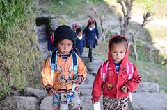 DSC_4740 (jdcruzba) Tags: nepal nikon sigma abc annapurna annapurnabasecamp d5100