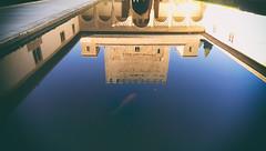 royal (boldfacedtype) Tags: fish reflection pond spain palace alhambra granada koi andalusia