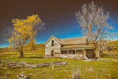Past Prosperity (KPortin) Tags: trees abandoned abandonedhouse lincolncounty