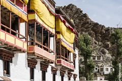 Il monastero di Hemis