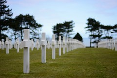 D-Day Cemetery (evenharbo) Tags: world france nikon war cross american ww2 second normandie normandy dday troops colleville frankrike omahabeach normandyamericancementeryandmemorial cimetireamricaindenormandie nikond7100