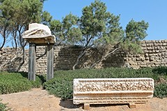 Ruins of Caesarea, Israel (Esther Spektor - Thanks for 10+ millions views..) Tags: plant detail tree history stone wall israel site ancient ruins pattern roman carving structure archeology holyland ceasarea