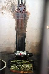 The holy spot where Devi Parvathi did penance under Padhiri tree (Raju's Temple Visits) Tags: cuddalore 275 thevarasthalam