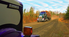 K-Whoppin on the Cedar (jr-transport) Tags: logging icon chrome logger custom manac kenworth w900 w900l icon900