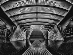 stairs (stefan.lafontaine) Tags: blackandwhite white black blancoynegro blanco monochrome noir y negro schwarzweiss et weiss blanc schwarz blancetnoir skancheli