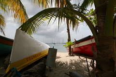Antilles 2012 100