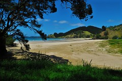 It's beautiful in New Zealand