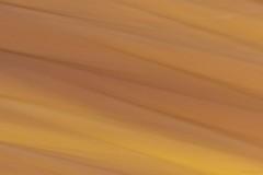 ICM Wood (Wild Drake Photography) Tags: icm sooke resolve macgreggorpark