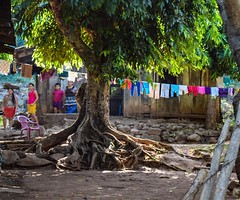 """I pause at the entrance of their house. """"That's a beautiful tree,"""" I say to the mother. """"Yes,"""" she says. """"Can I take a picture of it?"""" """"Of course."""" Her son runs outside and sees me. """"Gringo!"""" #theworldwalk #travel #elsalvador"""