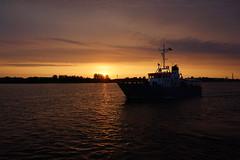 DSC09942 (Gnter Hickstein) Tags: ocean vacation water meer mare sailing ship urlaub balticsea sail ostsee rostock hansesail sailingship uelzen 2015 gnterhickstein