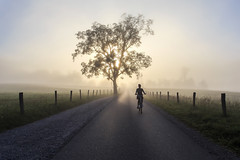A Morning Ride (dshoning) Tags: road morning woman sun tree bicycle fog sunrise tennessee rider hff