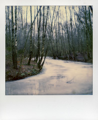 a river to scate away on (Paul A. Rizer) Tags: nature river polaroid sx70 frozen instant instantshot impossibleproject 092015 impossiblecolourforsx70 scateawayon hundewildniss