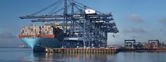 Maren Maersk - 12 image stitch (The original SimonB) Tags: point suffolk january olympus peninsula felixstowe 2016 landguard e420