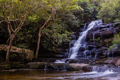 Somersby Falls (robertdownie) Tags: park new trees water wales coast waterfall moss rainforest sandstone rocks long exposure south central australia brisbane falls national nsw tranquil gosford trickle somersby