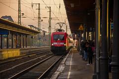 182 003 Westwrts (Linus Follert) Tags: berlin train hamburg siemens eisenbahn railway bahnhof sachsen anhalt express taurus bahn inter deutsche regio stendal 182 ire regionalbahn baureihe