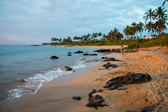 _DJF0895.jpg (sophie.frederickson@att.net) Tags: family wedding people usa hawaii events places hi states wailea