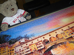 """""""Just finnished!"""" (pefkosmad) Tags: bear italy ted river toy florence stuffed teddy fluffy hobby medieval puzzle plushie firenze leisure jigsaw arno italie pontevecchio pastime tedricstudmuffin"""