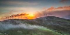 IMG_0021-2 (katiewong511) Tags: park winter fog sunrise outdoor hiking windmills trail livermore vasco regionalpark