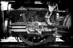 Iron Horse (Groovyal) Tags: travel b vacation horse station train photography iron track engine rail ticket steam caboose locomotive baggage engineer conductor ironhorse deisel groovyal img0774