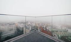 fog line (_gate_) Tags: vienna wien street winter art fog austria sterreich nikon europa europe cityscape nebel view january foggy eu haus des d750 28 aussicht turm flak januar 2016 14mm samyang jnner meeres aussichtg