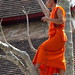 Bikkhus (buddhist monk) hanging lights in preparation of the Boun Ok Phansa celebration (last day of the Buddhist lent). Wat Kili, Luang Prabang, Laos