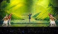 Lago dei Cigni (GD-GiovanniDaniotti) Tags: ballet lake lago teatro donna swan ballerina sofia milano danza clown mani volo uomo corona punta salto piedi viso tutu linear gambe bulgary ciak cigni cigno ballerine palcoscenico balletto