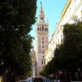 #sevilla #giralda #Andalucía #travelspain #naranjos #igerssevilla