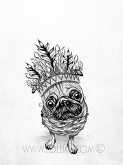 Indian Pug (LouJah.Art) Tags: dog chien pet pets cute art dogs animal animals tattoo hippies illustration drawing indian feathers feather hippy pug tattoos doodle indie draw pugs boho animaux gypsy indien bohemian gypsies boheme carlin plumes chiens plume bohochic tattou bohemien tattouage bohostyle tattooideas loujah