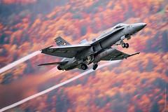 McDonnell Douglas F/A-18 Hornet during AXALP 2015 (Alex Babashov) Tags: show plane switzerland force aviation military air jet spot landing airshow planes hornet airforce f18 douglas takeoff spotting avia mcdonnell stby meiringen fa18 axalp swz 12150 planespot sotters aviadarts axalp2015