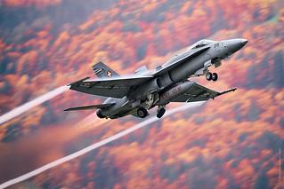 McDonnell Douglas F/A-18 Hornet during AXALP 2015