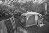 Leo Carrillo Campground (jimsheaffer) Tags: california camping beachcamping leocarrillo leocarrillostatebeach nikond750