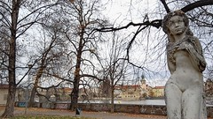 Statue Beside the Vltava (aarronevans) Tags: autumn trees statue republic czech prague bare branches smartphone vltava