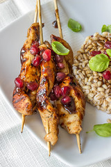 Chicken Shashlik with Pomegranate Molasses (wylinka) Tags: food chicken pomegranate meat