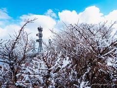 () Tags: snow japan stars olympus seven fukuoka     zuiko kumamoto omd    em1 918     m43                  micro43 microfourthirds kumamon  olympusem1