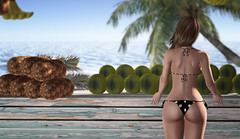Fruit Stand (Cash Meili) Tags: sl pineapples fruitstand coconuts