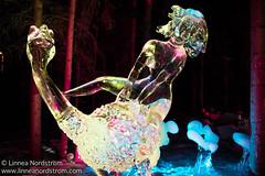 Ice Art - Ostrich Rider