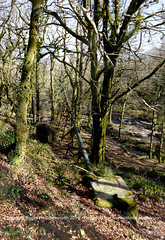 A single pipe, all that remains of the area's industrial past.   Golitha Fall National Nature Reserve (doublejeopardy) Tags: england cornwall unitedkingdom naturereserve gb liskeard riverfowey golithafalls