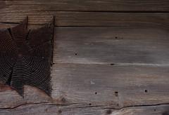 Arriach (Harald Reichmann) Tags: riss krnten tradition alter holz handwerk verbindung schwalbenschwanz bearbeitung baukunst wachstum balken jahresringe verwitterung arriach wllan getreidekasten