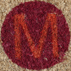 letter M (Leo Reynolds) Tags: door lumix coconut m panasonic mat mmm letter squaredcircle welcome oneletter grouponeletter xsquarex fz1000 xleol30x sqset123