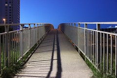 Bridge to nowhere (Marta Paredes) Tags: madrid blue its up azul canon puente phone grow dont converse rbol trap brigde mvil 600d