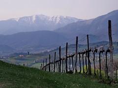 inverno/primavera - winter/spring (ma.ri_na) Tags: primavera cansiglio viti prealpi sarmede pizzoc colvisentin