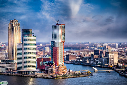 View Rotterdam.  Holland Amerika Lijn