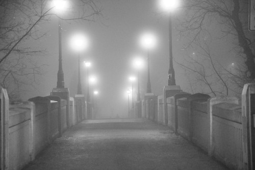 Fog _2016_03_13_20-10-59_DSC_6713_©LindsayBerger2016